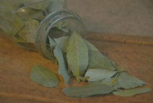 Ein Glas mit getrocknetem Lorbeer